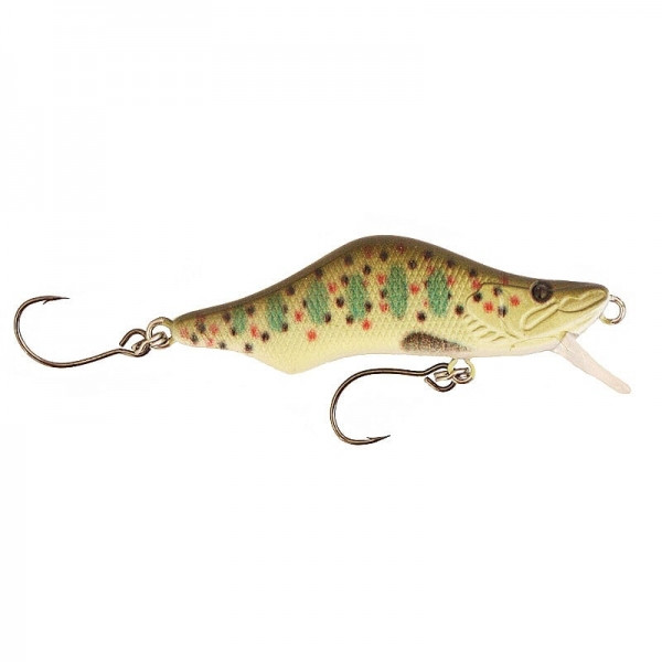 POISSON NAGEUR SICO FIRST 53 COULANT